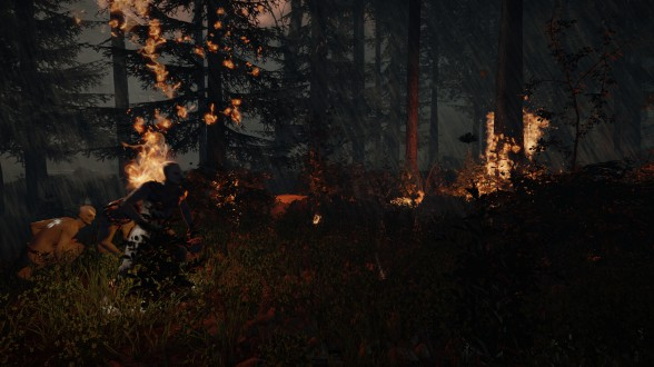 the forest 1