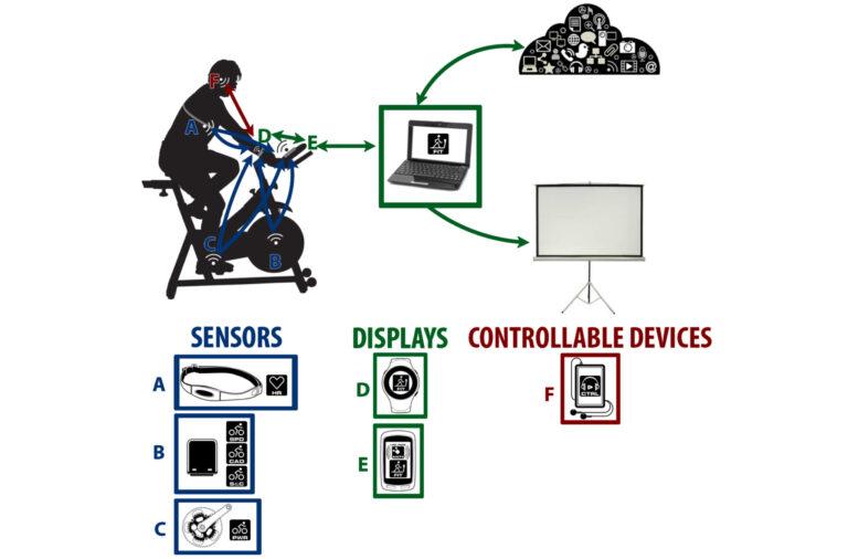 ANT+kann mehrere Sensoren und Displays miteinander verbinden (Bild: ANT+)