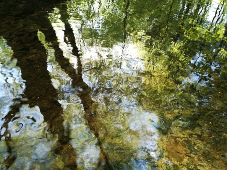 Schöne Reflektionen: Bei guten Lichtverhältnissen bekommt man mit der Kamera des P10 Lite teils erstaunliche Bilder hin.