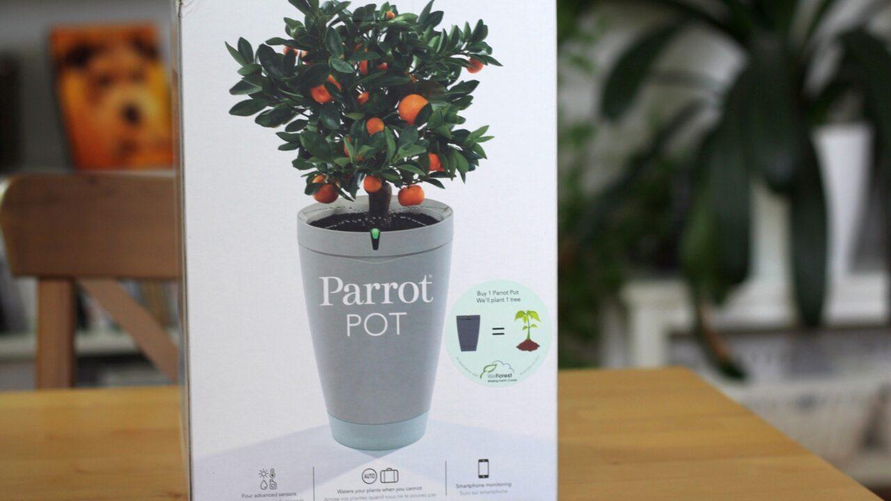 Parrot Pot: So funktioniert der intelligente Blumentopf