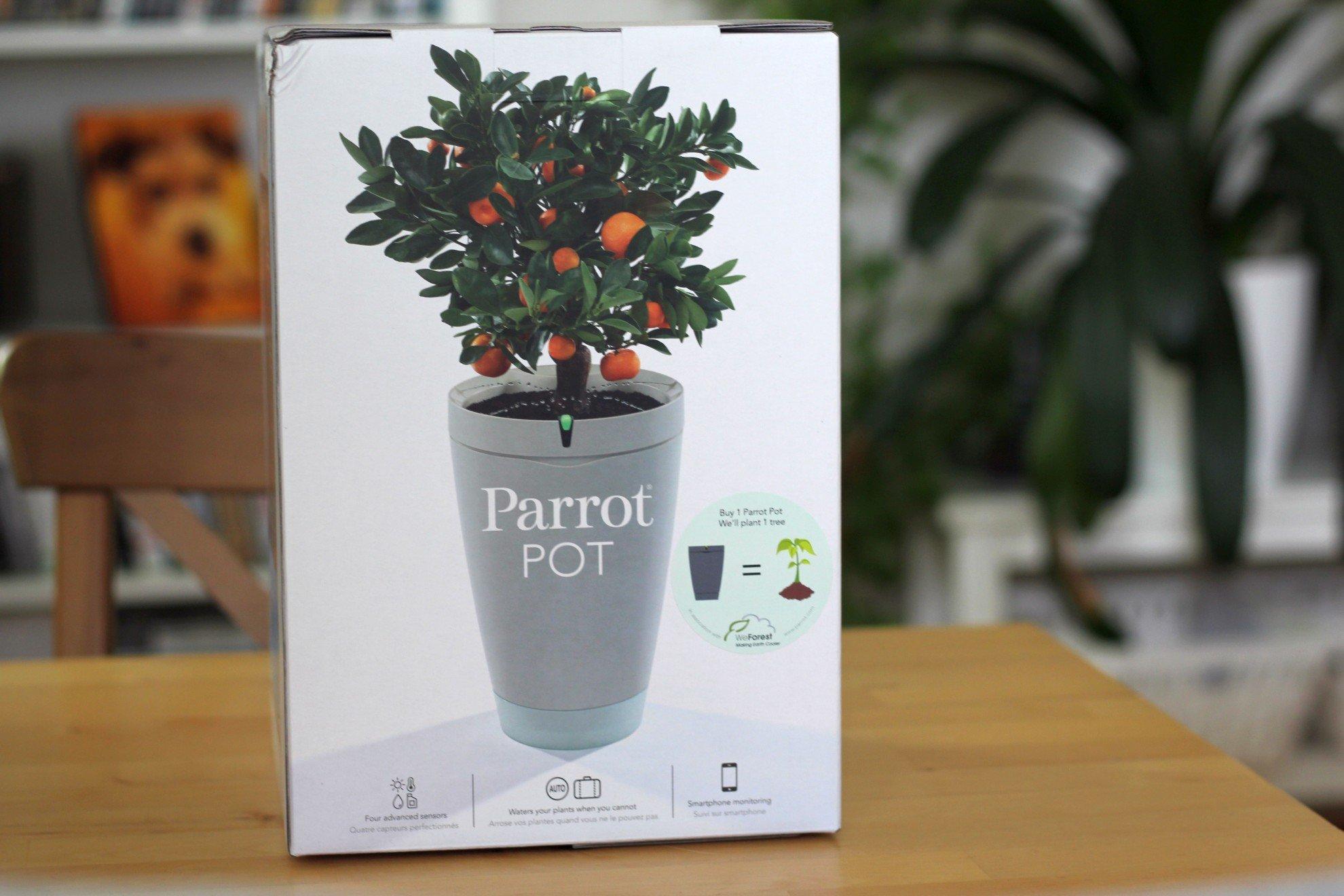 Parrot pot so funktioniert der intelligente blumentopf euronics trendblog - Wochenspiegel marktplatz ...