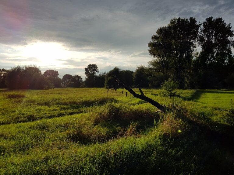 Bewölkter Himmer, toll ausgeleuchtetes Naturfoto