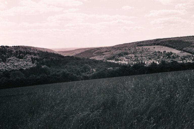 Schwarz-Weiß-Fotos mit dem Ilford 400 XP2