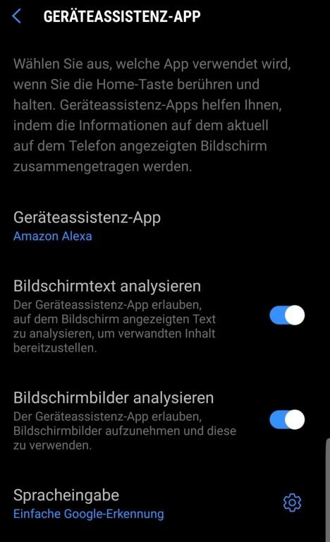 Wählt Alexa statt Google aus. (Foto: Screenshot)
