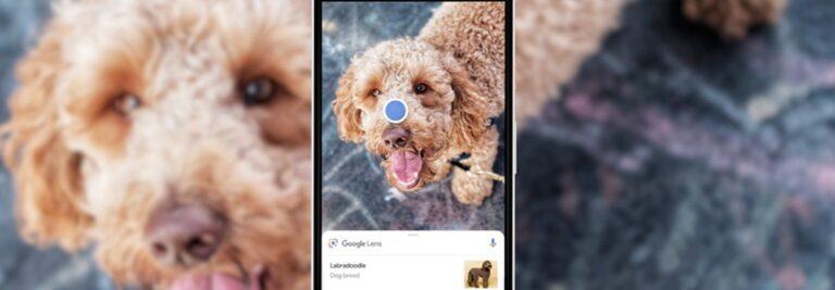 Google Lens wird noch schlauer. (Foto: Google)