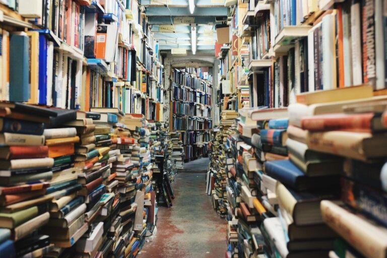 Wenn man mal ehrlich ist, enden Bücherregale doch meist so.