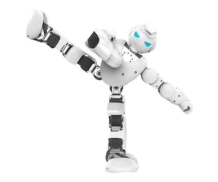 Kein Schnäppchen, dieser Roboter. (Foto: Ubtech)
