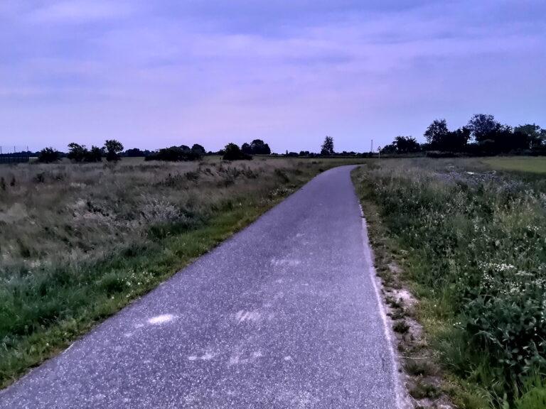 Tolles Bild mit fast violettem Licht auf den ersten Blick. Doch klickt ihr für die große Ansicht, seht ihr schnell, dass die Gräser links und rechts stark verrauscht sind. Aufnahme: abends zur Blue Hour
