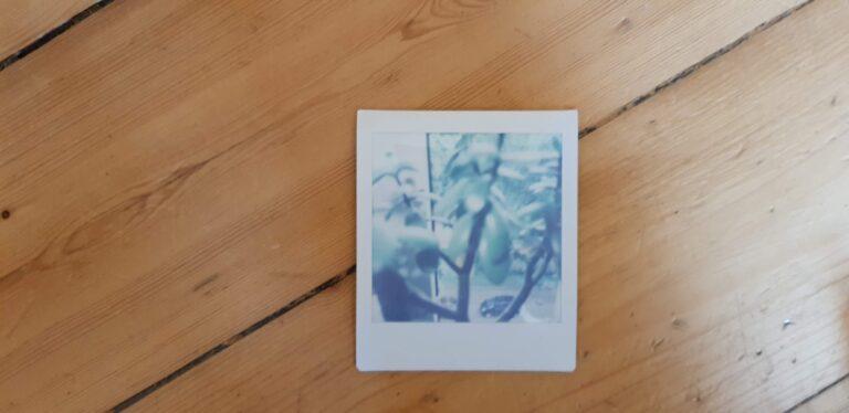 Hier entwickelt gerade ein Foto. Das dauert rund zwei Minuten, geht also auch schneller als bei der Polaroid. (Foto: Sven Wernicke)