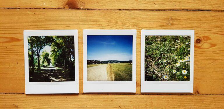 Drei Impressionen von der SQ6. (Foto: Sven Wernicke)