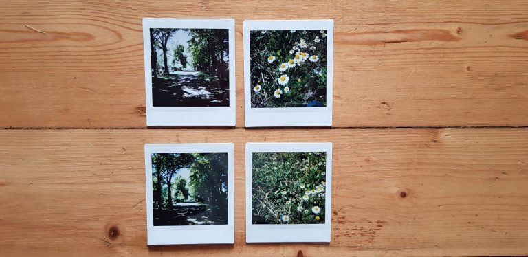 Oben Fotos von der SQ6, unten von der SQ20. (Foto: Sven Wernicke)
