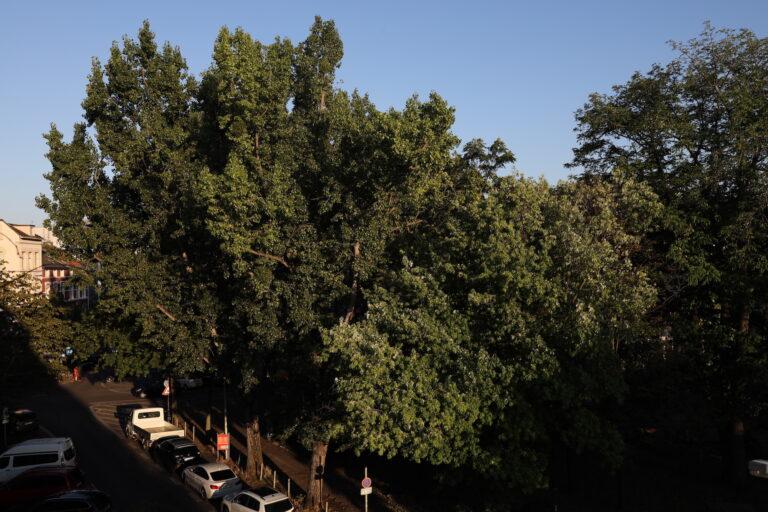 Landschaftsbild aufgenommen mit der EOS R