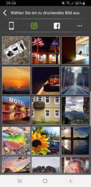 Auswahl von Instagram-Bildern. (Foto: Screenshot / Sven Wernicke)