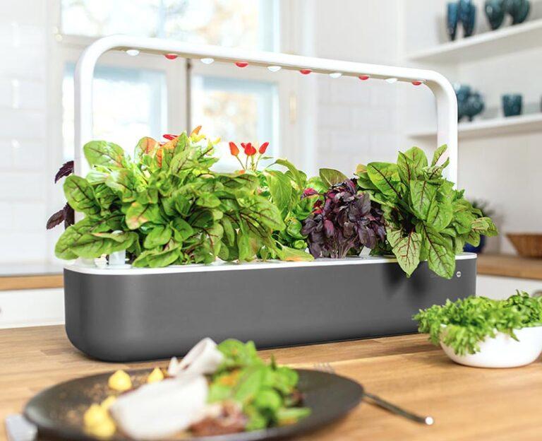 Smart Indoor Garden - für jeden Geschmack gibt es die passende Größe. (Foto: Emsa)