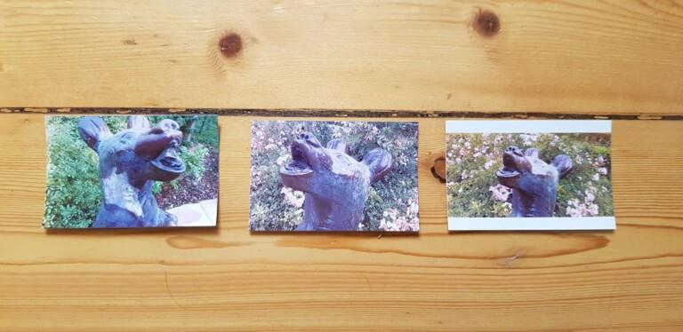 Zum Vergleich: Links Canon Zoemini C, Mitte Kodak Smile Camera, Rechts Kodak Smile mit einem ausgedruckten Smartphone-Foto. (Foto: Sven Wernicke)