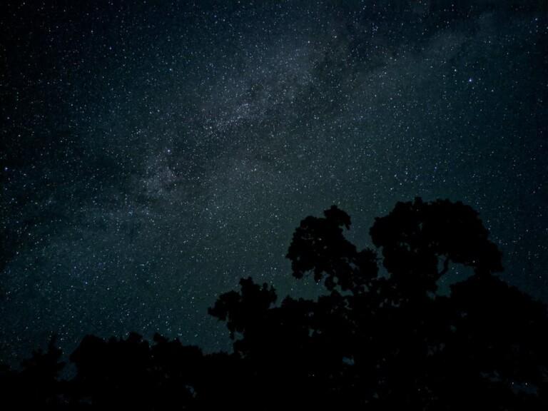 Bilder vom Sternenhimmel: Das neue Pixel 4 erlaubt Astrofotografie