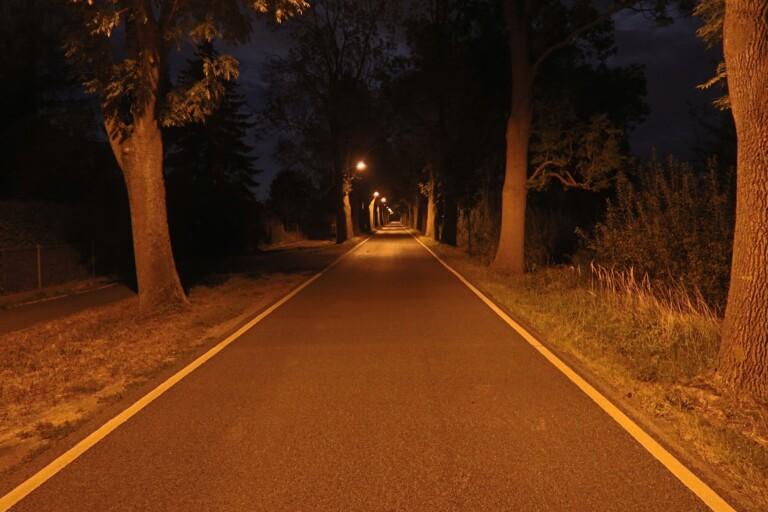 Auch bei schlechten Lichtverhältnissen noch gute Aufnahmen. (Foto: Sven Wernicke)