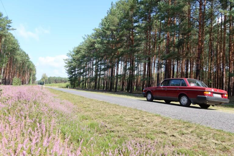 Abgelegene Straßen, Wälder, Wiesen. (Foto: Sven Wernicke)