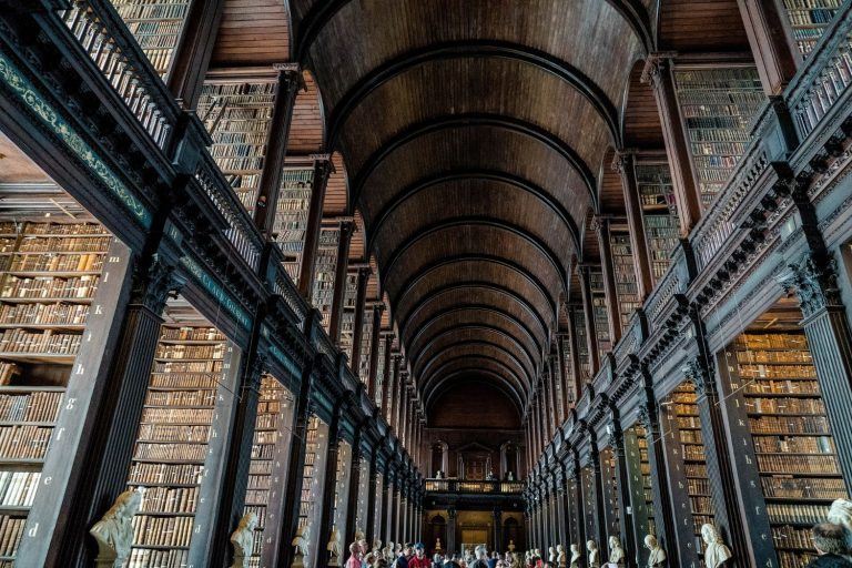 Bibliotheken: Was, wenn wir sie einfach als unsere Bücherregale betrachten? Bild: Tuende Bede
