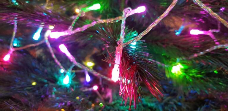 Lasst den Baum mit Twinkly Strings brennen. (Foto: Sven Wernicke)
