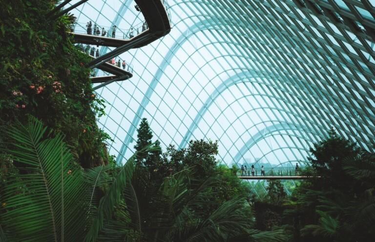 Green Tech: Die Lösung? Bild: Douglas Sanchez