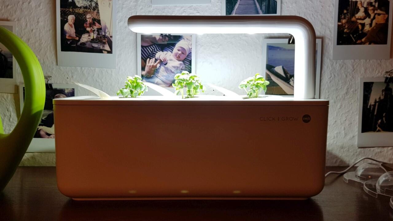 Emsa Smart Garden Click & Grow im Test: Kleiner Indoor-Garten für frisches Gemüse