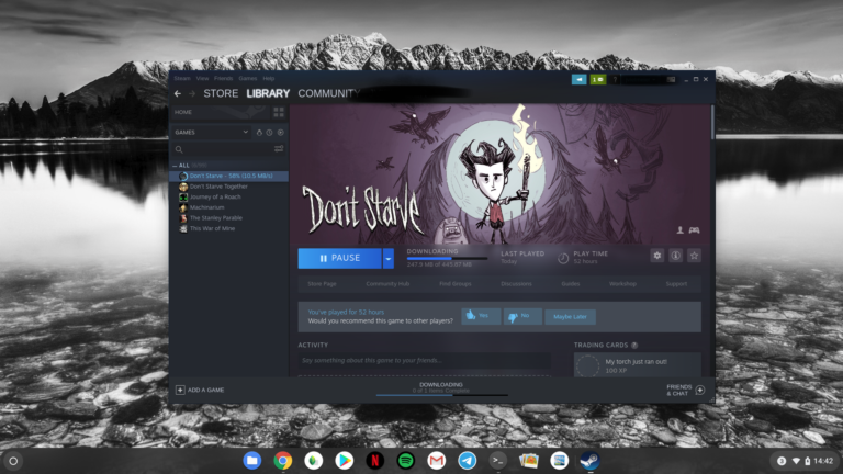 Steam via Linux auf Chrome OS