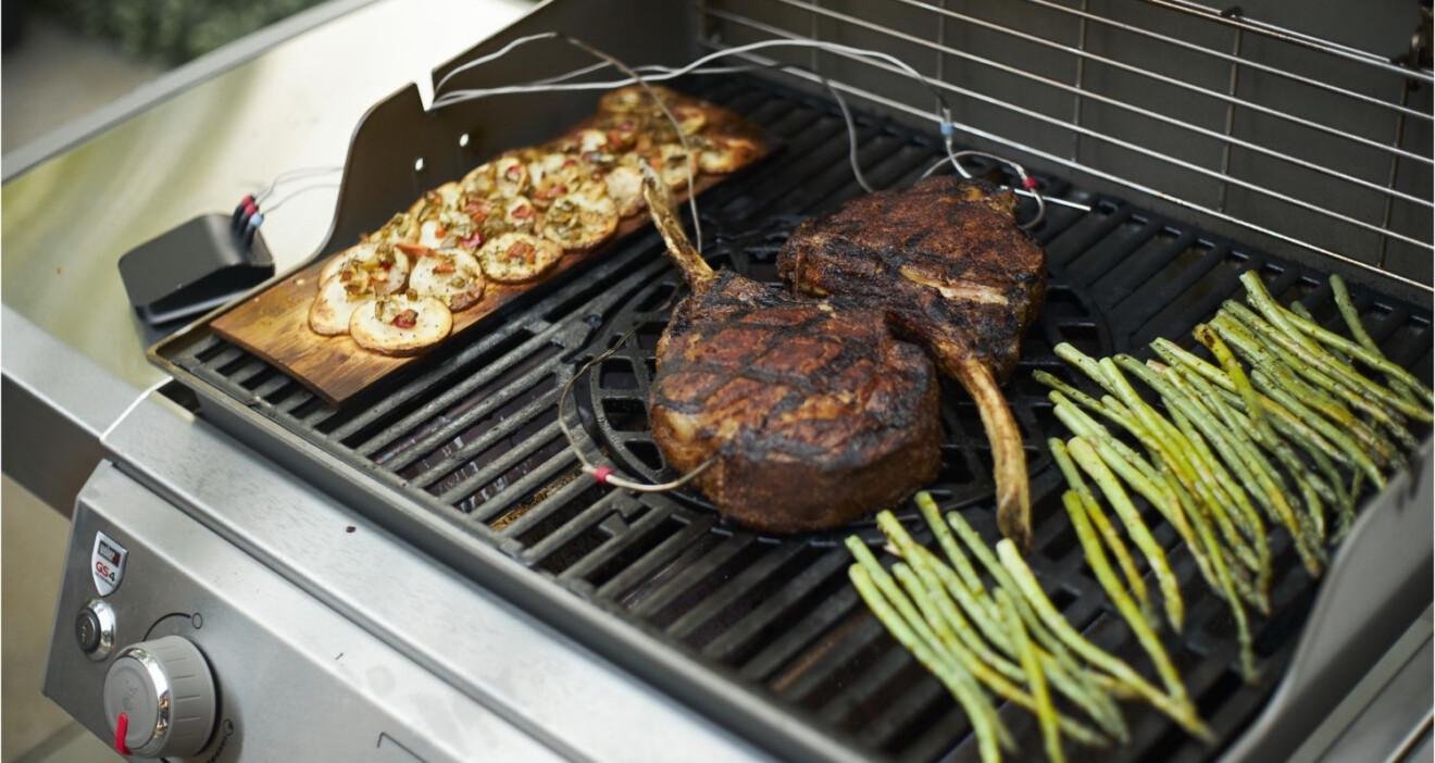 Fleisch und der Weber Connect Smart Grilling Hub