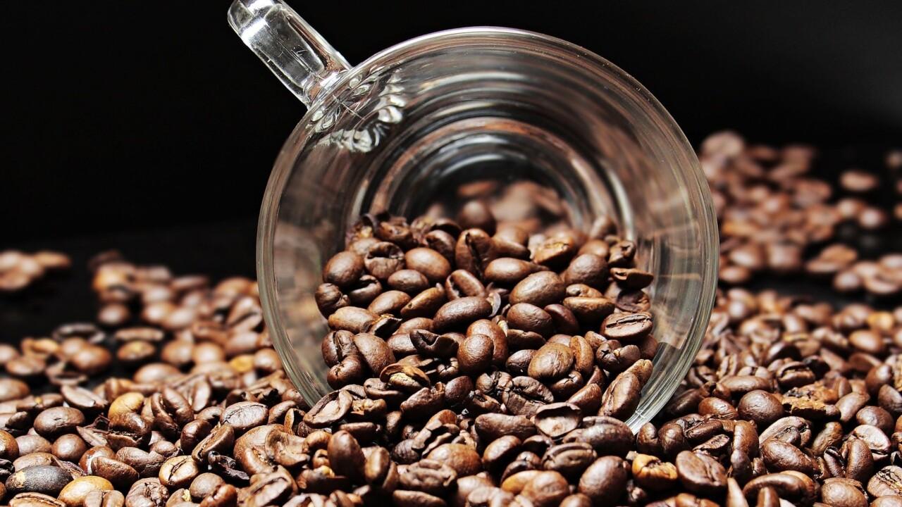 Auf ein Tässchen mit Euronics: Wie wir am liebsten Kaffee zubereiten