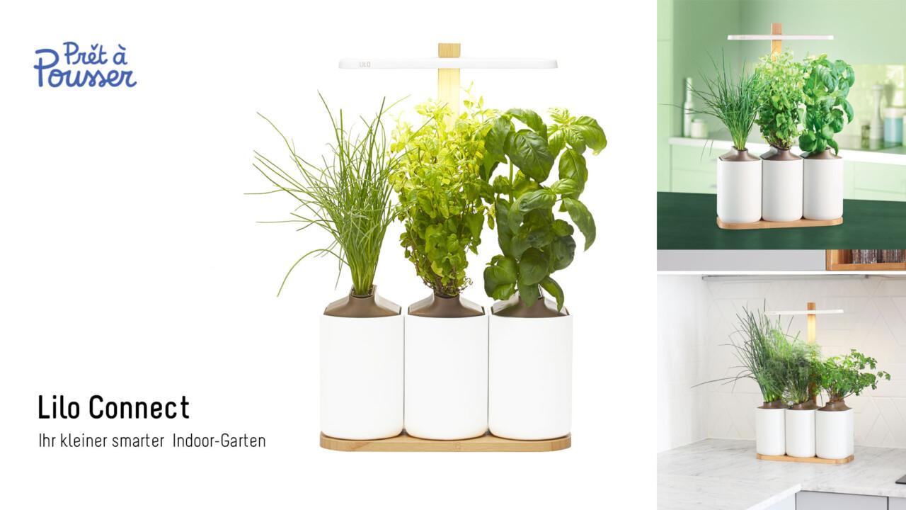 [Aktion beendet] Produkttester*In gesucht: Teste mit EURONICS einen Indoor Garten von Prêt à Pousser