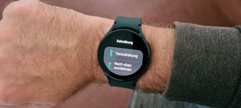Sehr praktisch: Die Uhr erinnert mich daran, mich regelmäßig zu bewegen. (Foto: Sven Wernicke)
